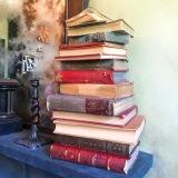 Pile of books in Ollivander's